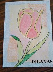 dilanas