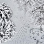 Piesiame ant sniego (1)