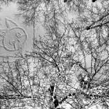 Piesiame ant sniego (7)